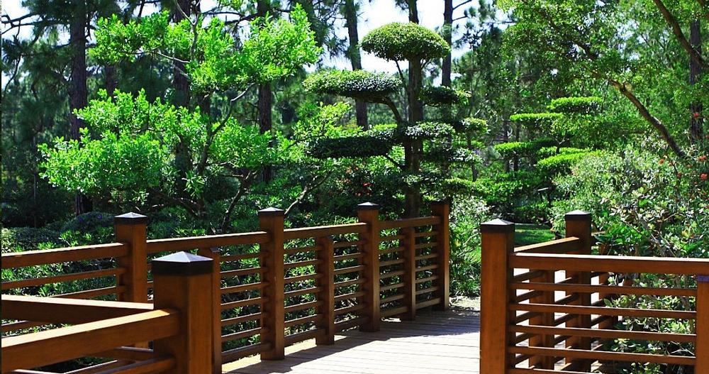 Kreativt Landskap tilbyr beskjæring og trepleie