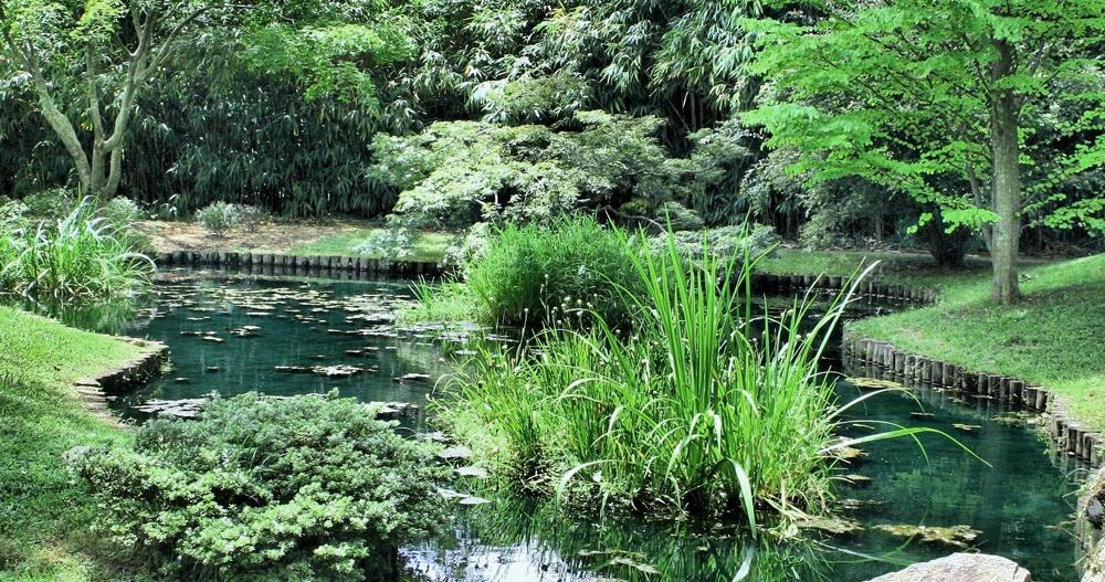 Kreativt Landskap tilbyr befaring og konsultasjon - gir tilbud på Hagedesign og Hageplan